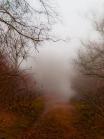 The path in the mist by Livath
