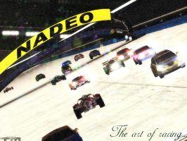 The Art of Racing by courage-and-feith