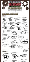FMA Eye Reference Sheet by Taralen