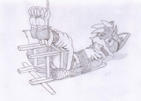 Shadz chair-tied by Shadz-the-Fox