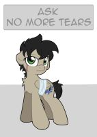 Ask no more tears by nerow94