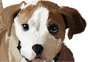 Jack Russell Puppy MS paint by SahraJane