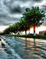 after rain and into light by yellowNOT