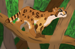 EBC: I climb to hunt and hunt to climb by Awesomesauce2014