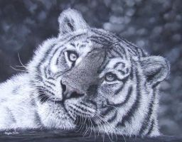 tiger (pastels) by AngelaMaySmith