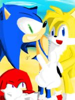Sonic Heroes by ThatOtherGuy19