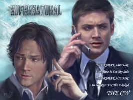 Please focus on supernatural by firebolide