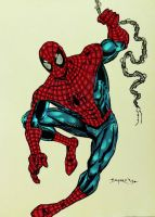 FanBoy67 Spiderman by Cupercrusader