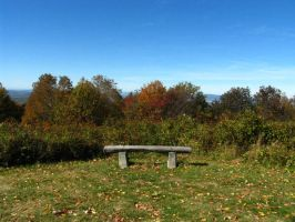 Bench At The Top by abuseofstock