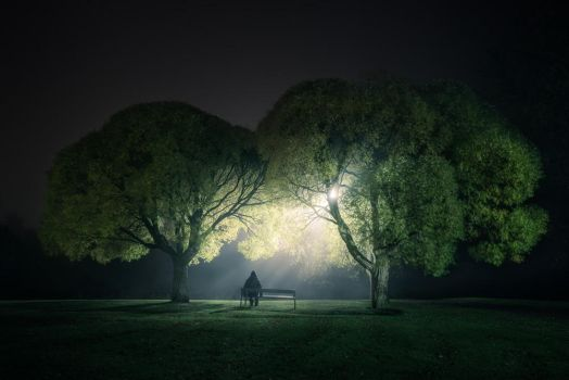 Night at the Park by MikkoLagerstedt