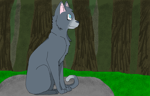 Bluestar on Highrock by BlueSkiesAndCookies