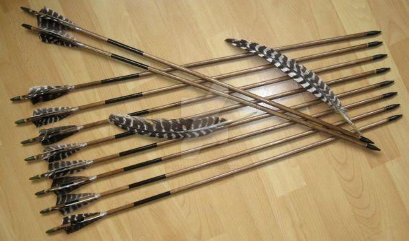 Training arrows for traditional bow, black set #2 by Aylie-Serinde