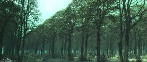 Cloned Forest by 3DLandscapeArtist