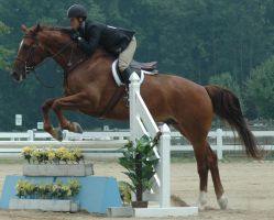 Jump 1 by stockhorse