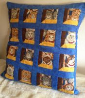 Kitty faces pillow by Ammeih