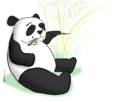 I Like Panda by theCheeseGrater