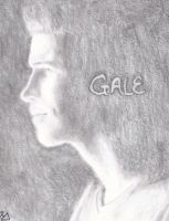 Gale by PaulieThorn