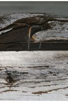 Rotted Shed Corner by shawn529