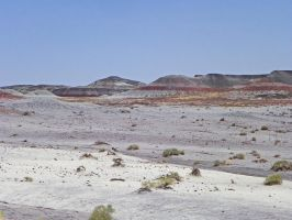 Painted Desert by Synaptica
