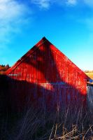 Red Shed by nelsonpray