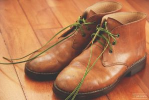 Chestnut Chukka Boots by whocaresme