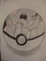 6.12.2012 The real life of Pikachu in a Pokeball by Ametiste