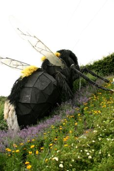 Bees will take over the world by sayres