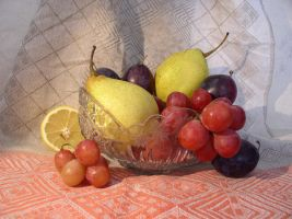 Fruit Composition 20 by SanStock