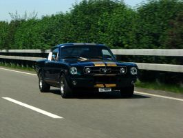 mustang on the road by AmericanMuscle