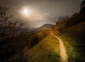 The Path by EmmmBeee
