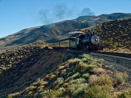 Steam Train by MartinGollery