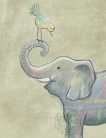 Elephant color by aurangelica