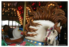 the carousel 1.2 by narcosomniac