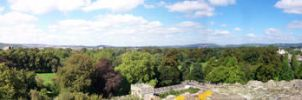 Cardiff from the Castle - No 1 by bisi