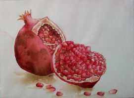 pomegranate by rougealizarine