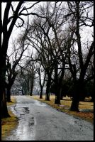 Cemetery Road by KidThink