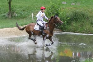 3DE Cross Country Water Obstacle Series XIII/5 by LuDa-Stock