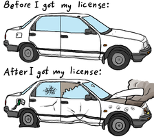 Before and After License by Elcool