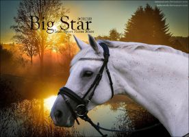 Big Star by PS-Graphics