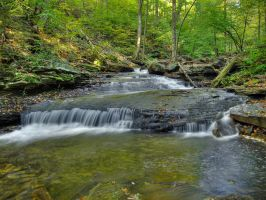 Ricketts Glen State Park 26 by Dracoart-Stock