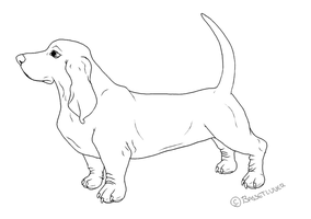 basset hound lineart by bassetluver