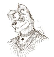 quick face sketch 1 by vincentwolf