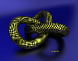 Dotted Twisted Torus by fractalyst