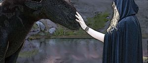 Me and Toothless by LadyElasa