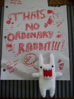 no ordinary rabbit by Maurri