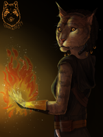 My Khajiita Skyrim by Polar-Wolf