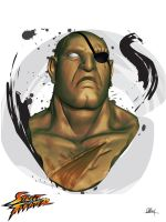Sagat Bust by R4TRoOT