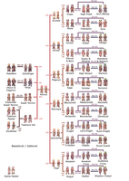 Ragnarok Online Job Tree by Rutana