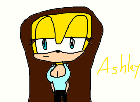 Ashley the hedgehog(Gift) by EP2016
