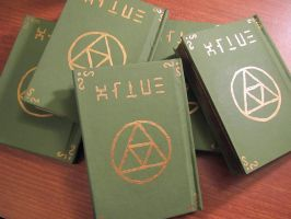 Hylian Notebooks by Sarinilli